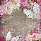 Butterflies and orchids flowers  background Royalty Free Stock Photo