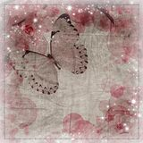 Butterflies and orchids flowers background Stock Photography