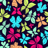 Butterflies Pattern Color Stock Images