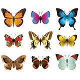 Butterflies photo-realistic vector set Royalty Free Stock Photos