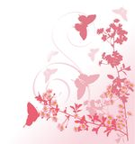 Butterflies and pink cherry tree flowers Royalty Free Stock Photos