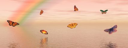 Butterflies and rainbow Stock Image