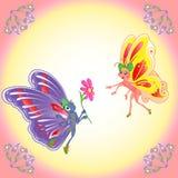 Butterflies romantic pair Stock Images