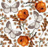 Butterflies. Roses. Beautiful background. Stock Photo