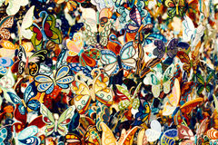 Butterflies from saint Tropez, France. Color butterflies from saint Tropez, France Stock Images