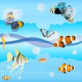 Butterflies and saltwater fish. Butterflies are flying over the ocean waves, fish swim in water.Illustration format EPS-10 Stock Image