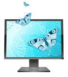 Butterflies on a screen Stock Image