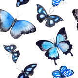 Butterflies. Seamless background. Watercolor Stock Photography