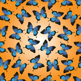 Butterflies seamless  design Stock Images