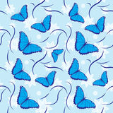 Butterflies Seamless Pattern Stock Images