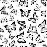 Butterflies seamless pattern Stock Photos