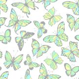 Butterflies. Seamless pattern. Hand-drawn insect backgrou. Endless background with butterflies. Hand-drawn pattern vector illustration