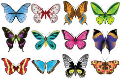 Butterflies set. A collection of vector butterflies. Each butterfly is different in shape and colors