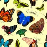 Butterflies set pattern Stock Images