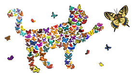 Butterflies. Silhouette of a cat is made up of small butterflies Royalty Free Stock Photos