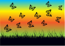 Butterflies silhouettes background Royalty Free Stock Photo