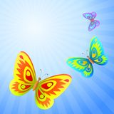 Butterflies in the sky. Butterflies fly in the blue summer solar sky Stock Photo