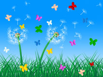 Butterflies Sky Means Dandelion Hair And Butterfly Stock Images
