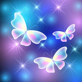 Butterflies and stars Stock Photo