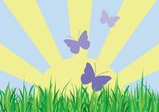 Butterflies in Summer royalty free illustration