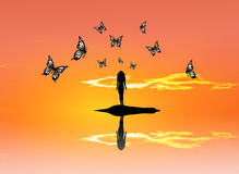 Butterflies sunset Royalty Free Stock Image