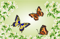 Butterflies Swallowtail and Vanessa in jasmine trees vector royalty free illustration
