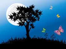 Butterflies and tree. Black tree with butterflies.giant beautiful full moon in the sky Stock Photos
