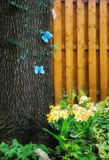 Butterflies on a Tree in a Spring Royalty Free Stock Image