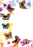 Butterflies (vector) Royalty Free Stock Images