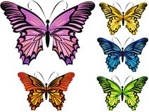 Butterflies. Vector illustration  Royalty Free Stock Images