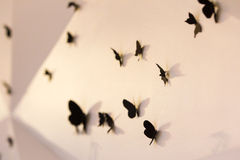 Butterflies on wall Royalty Free Stock Image