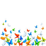 Butterflies on white background Royalty Free Stock Images