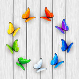 Butterflies on white wooden background Stock Image
