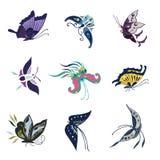 Butterfly,蝴蝶-昆虫海军上将 图库摄影