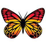 Butterfly 10. Ornamental butterfly in red and yellow colours Royalty Free Stock Image