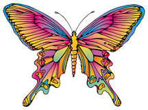 Butterfly. A colorful illustration of a butterfly stock illustration