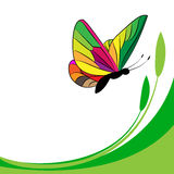 Butterfly. Vector illustration of a colorful butterfly Stock Image