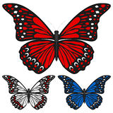 Butterfly. Set isolated on white background, Vector illustration Stock Photos