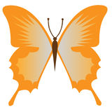 Butterfly. Single simple butterfly insect  graphic Stock Photo