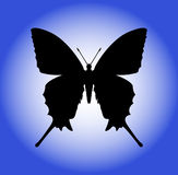 Butterfly. Silhouette on a blue background Royalty Free Stock Photos