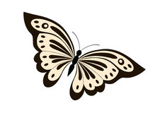 Butterfly. Vector illustration of beautiful black and yellow butterfly Stock Photos