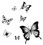 Butterfly. Illustration drawing of some beautiful black butterflies Stock Image