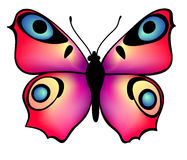 Butterfly. Colorful butterfly on white background, vector illustration Stock Photography