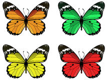 Butterfly. Vector illustration of beautifull butterflies Stock Photography