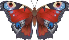 Butterfly. Illustration of a butterfly on the white background Stock Photos