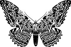 Butterfly. Black and white butterfly on white stock illustration