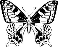 Butterfly. Black and white butterfly on white royalty free illustration