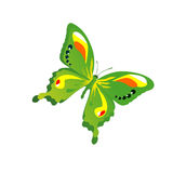 Butterfly. Bright butterfly waving its wings in the sky Stock Photography