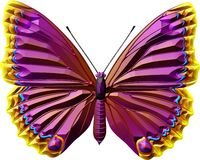 Butterfly. Colour and white butterfly line drawing royalty free illustration
