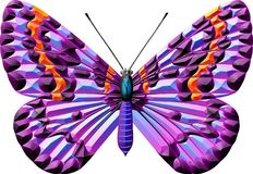 Butterfly. Colour and white butterfly line drawing vector illustration